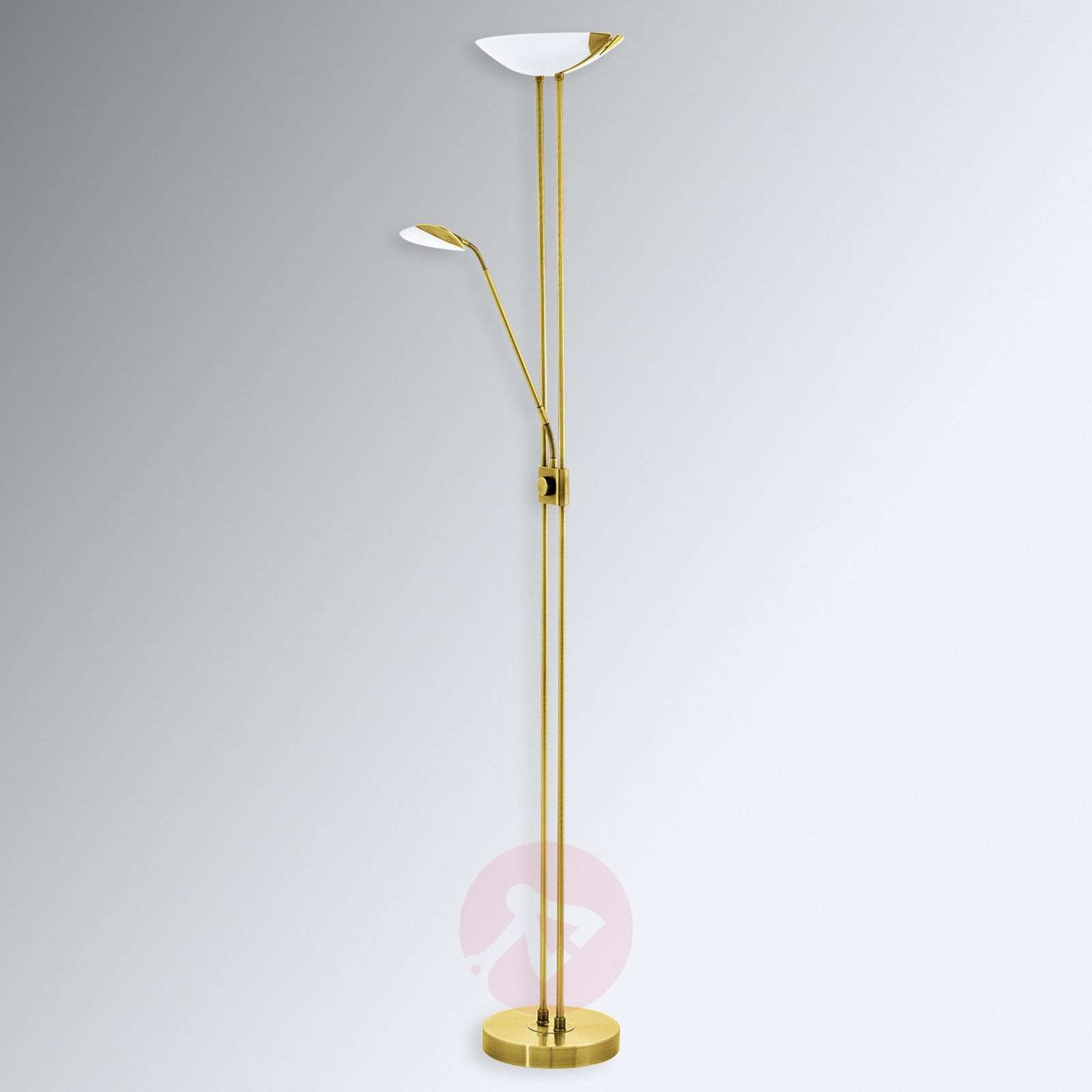 Led staande lamp baya in messing look lampen