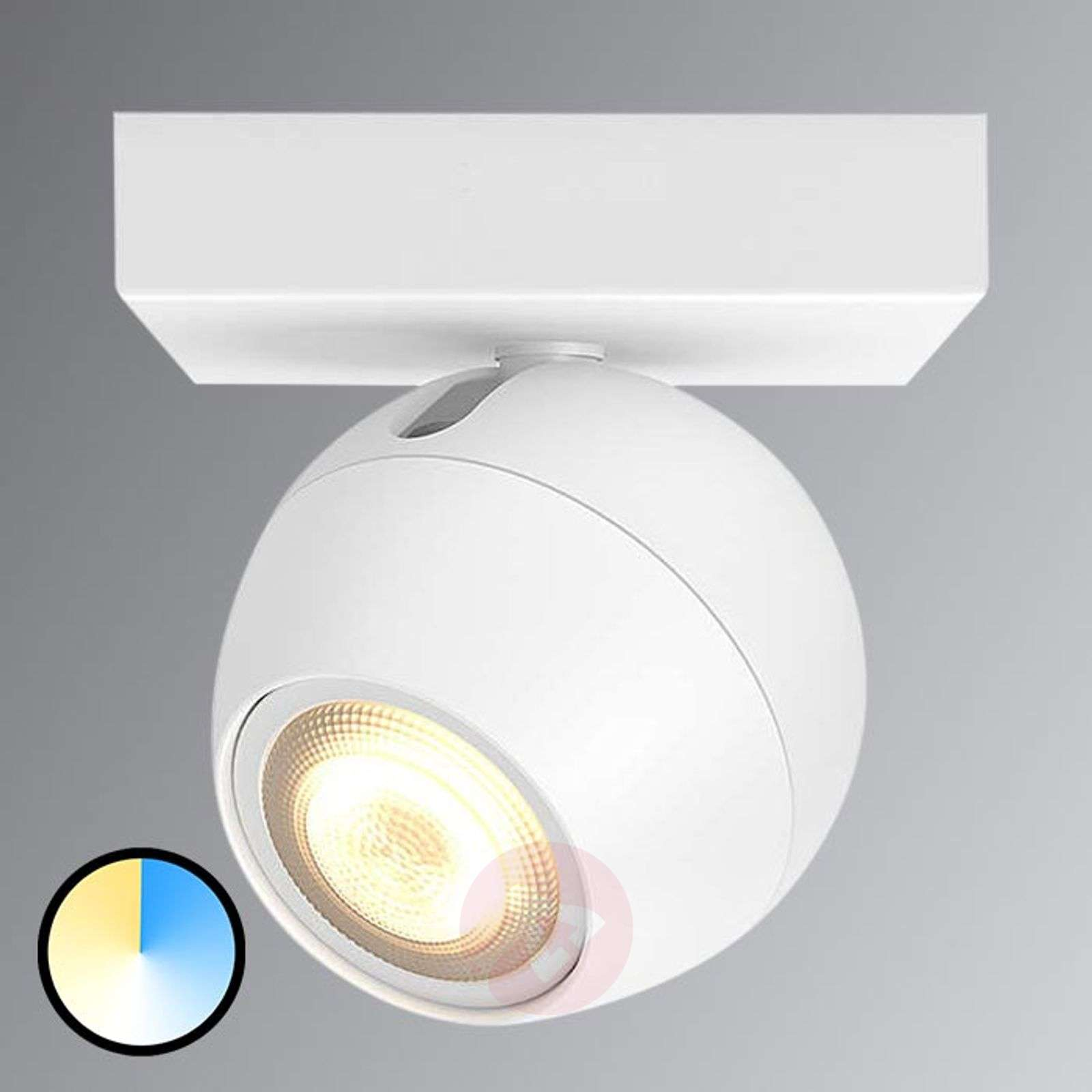 Opdateret Philips Hue Buckram - met 1 lamp. LED spot in wit | Lampen24.nl QM01