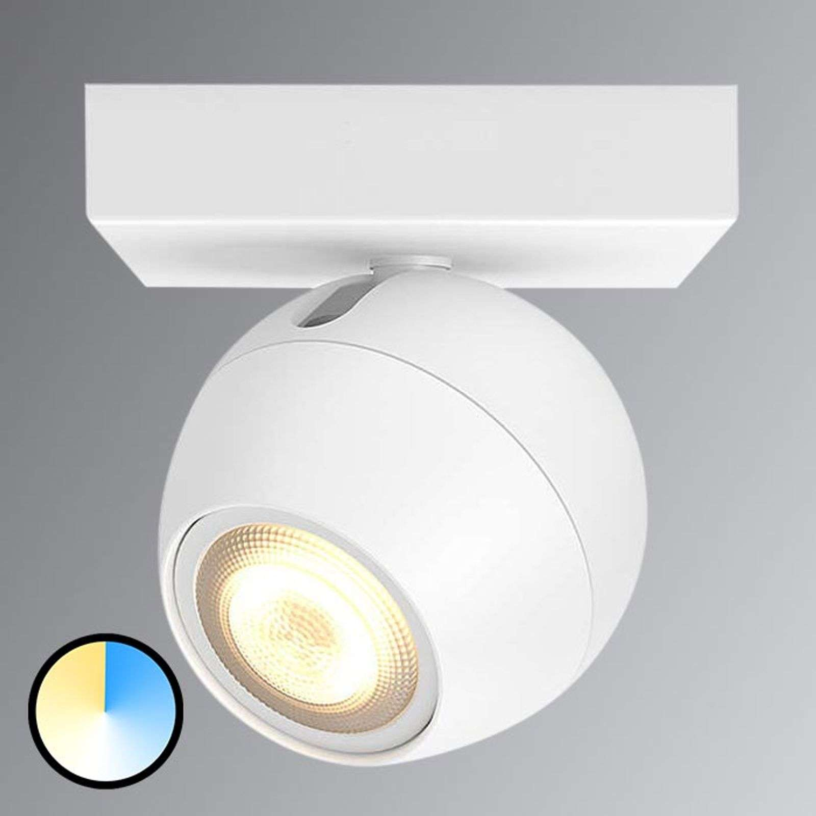 Philips Hue Buckram - met 1 lamp. LED spot in wit