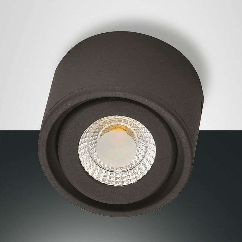 Kantelbare kop - LED downlight Anzio, antraciet